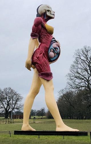 Damien Hirst - pregnancy blog (500 pix)
